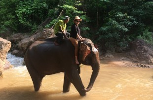Burma (75)