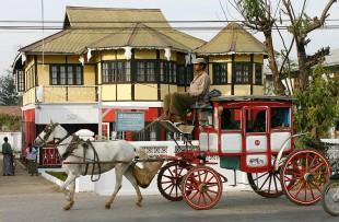 horse-and-cart-pyin-oo-lwin