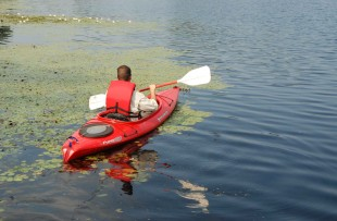 sportist-relaxing-canoe-ride-on-a-quiet-river