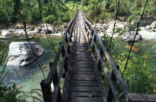 putao-bridge